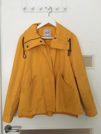 Ceket Harika