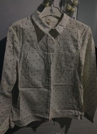 Cepli Gömlek Yargıcı