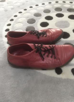 Bordo Ayakkabı Beta