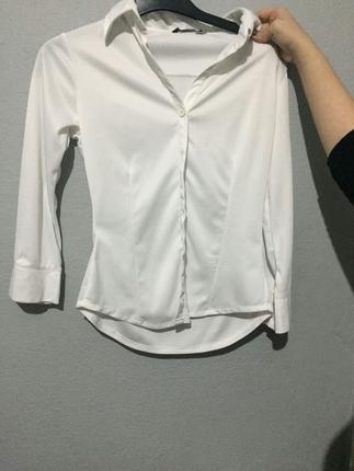 Collection Gömlek Gömlek