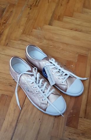 lacoste ayakkabi